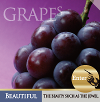 grapes1.png